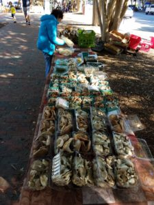 Mushrooms at Palafox Market
